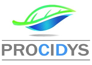 logo Procidys