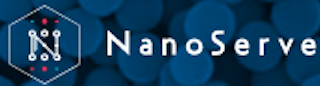 nanoserve international